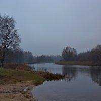 В НОЯБРЕ :: Валерий Руденко