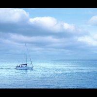 На морском просторе :: Lidiya Oleandra