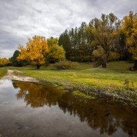 Осенняя... :: Влад Никишин
