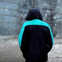 снегопад :: sv.kaschuk