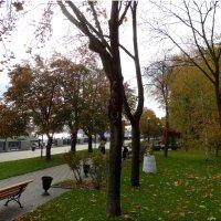 На набережной в октябре... :: Тамара (st.tamara)