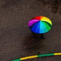 Дождь :: михаил кибирев