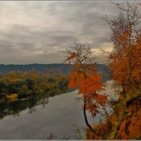 Москва река, пасмурно :: Дмитрий Анцыферов