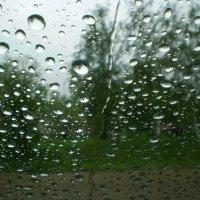 Дождь :: Андрей