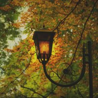 Glowing lantern in autumn park :: Сергей