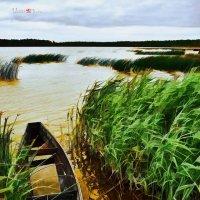 Мечта рыбака :: Борис Соловьев