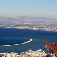Хайфский залив :: roman tsibulin