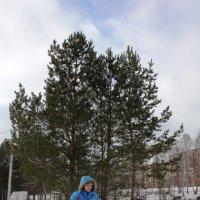Ноябрь в парке :: Наталья Золотых-Сибирская