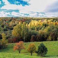 Осень :: Николай Юшников