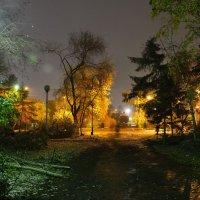 Утро осеннего парка :: Валерий Кабаков
