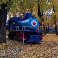 Золотая осень в детском парке им. Энгельса. :: Пётр Сесекин