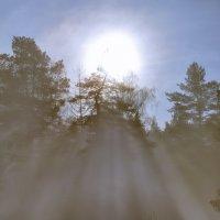 Туман :: сергей зуев