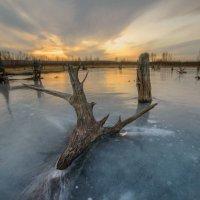 Зимовье водяного :: Сергей Брагин