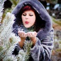 ах снег , снежок..... :: Сергей Феоктистов