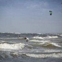 Летящие по волнам :: Виталий Латышонок