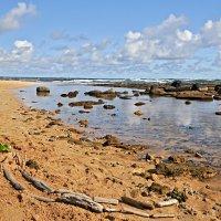 пустынный пляж :: Galina