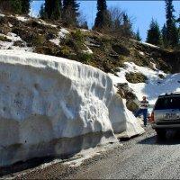 В горах тает снег и природа пробуждается от зимней спячки. :: Anna Gornostayeva