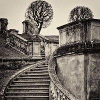 Лестница в... :: Елизавета Вавилова
