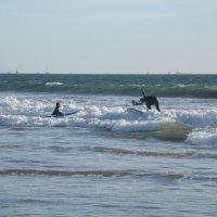 Серфинг :: Николай Танаев