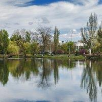 Парковый пруд. :: Виктор Чепишко