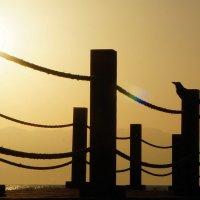 Солнце и ворон :: Александр Орлов