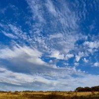 Синь небесная :: Валерий Дворников