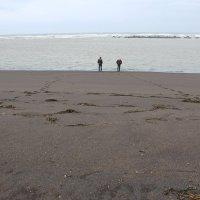 Черные пляжи Исландии :: Алексей Часовской