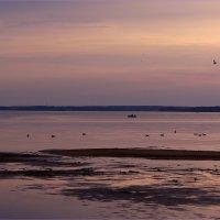 Есть цвет у сумерек, летящих чудесным светом над водой :: Татьяна Ломтева