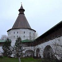 Ново-Спасский монастырь :: Владимир Болдырев