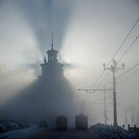 Тень, туман. :: Максим Иванов