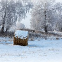 зима пришла :: Виктор Ковчин