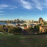 Вид на бухту Сидней-Харбор. :: Люда Валяшки