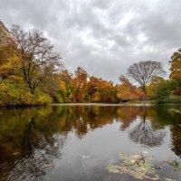 На озере :: Galina Kazakova