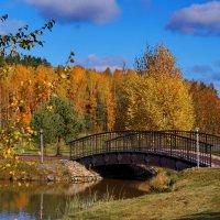 мостик... :: Ольга Cоломатина