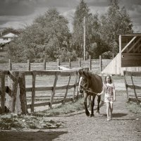 Выйду утром в поле с конём :: Валентина Илларионова (Блохина)