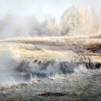 Зигзаг ноябрьского утра... :: Андрей Войцехов