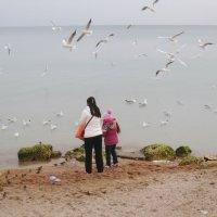 На берегу моря. :: Ирина Нафаня