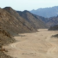 Пейзаж Аравийской пустыни :: Чария Зоя