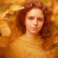 Осень :: Сергей Пилтник