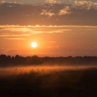 Утренний туман :: Basilio Чурюкин