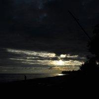 Всё темней, всё мягче краски, всё печальней голоса... :: Ирина Данилова
