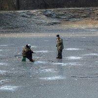 По тонкому льду. :: Яков Реймер