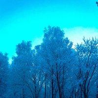 Зимняя сказка. :: Дмитрий Русак