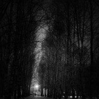 rty :: Андрей Нестеренко