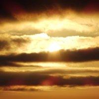 солнышко...  восход :: Юлия Панюта