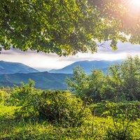 Утро в горах :: Тагир Гасратов