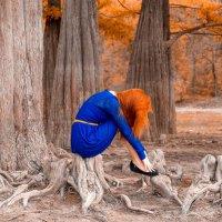 Magic Wood :: Алексей Яковлев