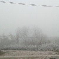 Зима рисует пастелью :: Наталья Дмитриева