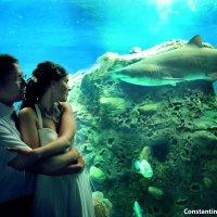 свадебные фотографии :: Константин Вергакис