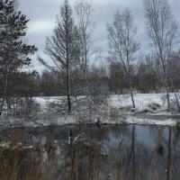 зима :: NIKOLAY Nagaev